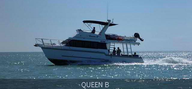 QueenB